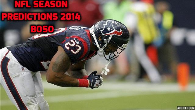 NFL Season Predictions 2014 (BoSo)